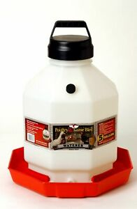5 Gallon Plastic Poultry Chicken Waterer Little Giant Automatic Water Flow New