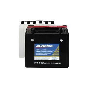 Acdelco 88863884 Battery Powersports Agm 12 Volt 310 Cca Arctic Cat