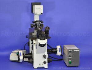 Olympus Ix71 Inverted Fluorescence Phase Microscope dual Left right Ports