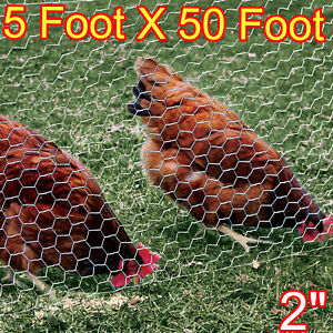 50 Ft Mesh Poultry Netting Galvanized Fence Garden Mesh Wire Animals Net Protect