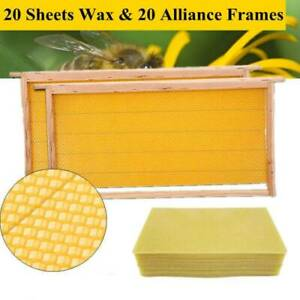 20 Assembled Bee Hive Frame Waxed Natural Foundation Honey Box Beekeeping