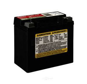 Battery Automotive Agm Acdelco Pro Aux12