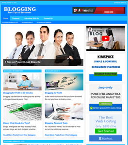 Blogging Website Business For Sale Work From Home And Easy To Manage Website