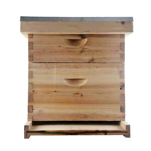 Bee Hive House Auto Honey Frames Beehive Beekeeping Brood Wooden Box Hotsale