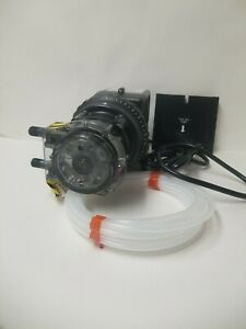 Stenner Pump 45m1 stenner Peristaltic Pump Adjustable Head rated At 0 2 To 3 Gpd