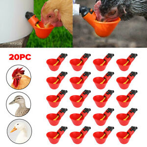 20pack Poultry Water Drinking Cups Chicken Hen Plastic Automatic Drinker Quail T