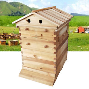 7pcs Auto Beehive Frame Comb beekeeping Wooden House Deluxe Bee Hive Starter Kit