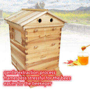 7pcs Durable Bee Hive House Auto Honey Beehive Beekeeping Brood Wooden Box Kit