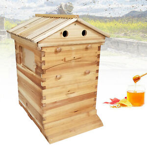Wooden Beekeeping Honey Beehive House Wooden For 7pcs Bee Comb Hive Frames New
