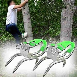 Tree Climbing Tool Kit Pole Climbing Spikes Safety Shoes Picking Fruit Viewing