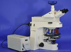 Zeiss Axioplan 2ie Imaging Manual Fluorescence Dic Phase High N a Microscope
