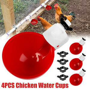 4 Chicken Watering Cups Poultry Drinker Fully Automatic Waterer Hen Quail Pigeon