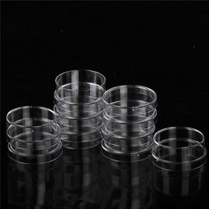 10pcs Sterile Polystyrene Plastic Petri Dishes Plate With Lids 35x15mm Hb