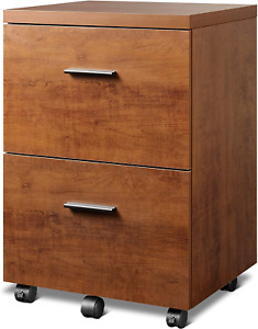Devaise 2 drawer Wood File Cabinet Mobile Vertical Filing Cabinet With Storage