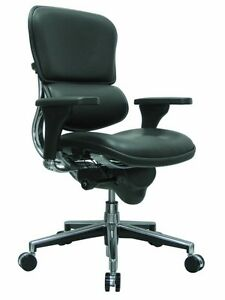 New Raynor Ergohuman Ergonomic Office Chair Black Leather W Low Back Le10erglo