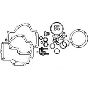 Plunger And Gasket Kit For International 756 706 966 1086 1466 766 1066 1026