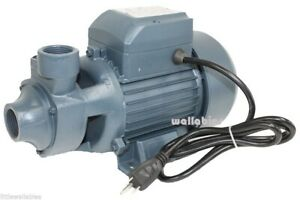 New Industrial 1hp Clear Water Pump Electric Pond Pool 13gpm 3400rpm