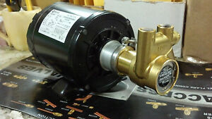 Procon Pump Kit With Motor Brass Procon Pump 115 Vac Motor 125 Gph