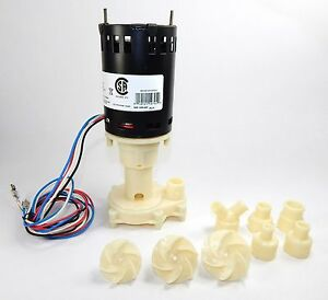 Little Giant Universal Ice Machine Replacement Pump 115 230v Rim u Brpap1