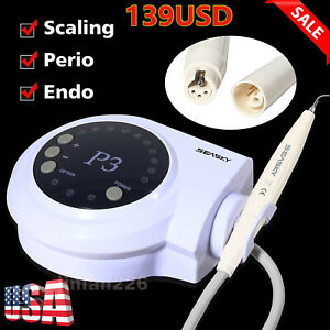 5 nsk Style Dental Slow Low Speed Straight Handpiece Nose Cone E type Seasky Hp