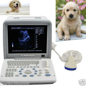 3d Software Veterinary Vet Laptop Ultrasound Scanner Monitor With 3 5 Convex