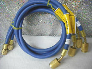 Cps Blue 36 Charging Hose W anti blow back Fitting
