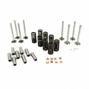 Valve Train Kit Massey Ferguson 2135 35 50 135 To35 Continental Massey Harris