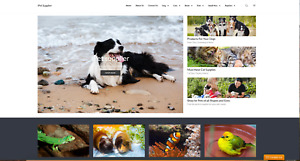 Ipetsupplier com Established Pet Supplies Web Store With Excellent Potential