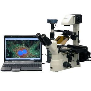 Amscope 40x 1500x Phase Inverted Fluorescence Microscope 5mp Ccd Fluo Camera