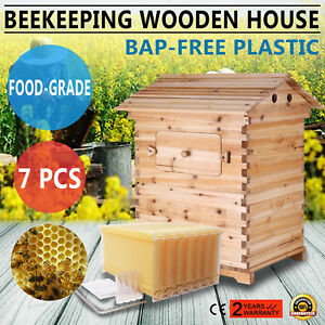 7pcs Auto flowing Honey Hive Beehive Frames 1 Pc Beekeeping Wooden House Sale