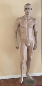 Male Mannequin Full Body Realistic 6 Ft Dress Form Display Vision Metal Stand