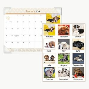 At a glance Puppies Monthly Desk Pad Calendar 22 X 17 2019