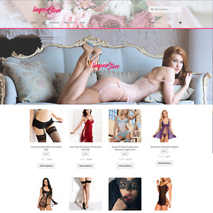 Lingerie Responsive Website With Ecommerce Feature Turnkey Website Dropshipping
