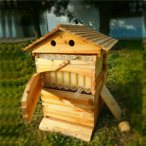 7pcs Upgraded Beekeeping Tool Hive Frames Beehive Wooden Brood Box Fast Ship