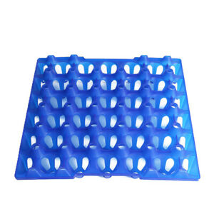 1pcs Blue Egg Tray Carrier Incubator Container 30 Hole For Turkey Duck Chicken