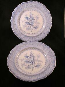 Pair Antique 19thc Blue Transfer Dinner Plate Ridgway Asiatic Plants 10 5 In