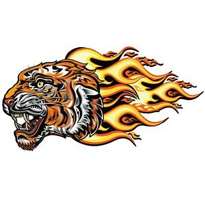 Tiger Face Wall Decal Truck Car Vehicle Window Decor Laptop 3m Sticker Lo380