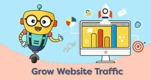 Human Unlimited Traffic For Website