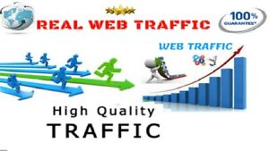 Unlimited Genuine Real Website Traffic For 2 Months 60 Days For 3 99