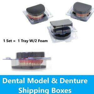 Model And Denture Shipping Container Includes Tray W 2 Foams Vacuum Former Set