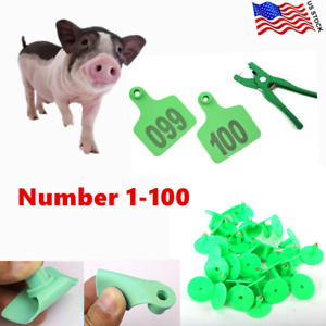 Livestock Ear Tag 1 100 Numbers Green Plastic Sheep Cow Goat Cattle Farm Animal