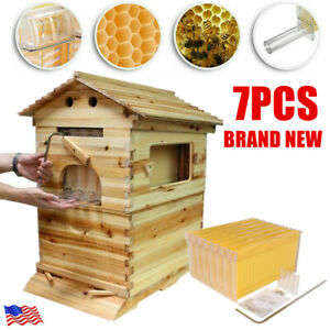 7pcs Auto Free Flowing Honey Hive Beehive Frames beekeeping Brood Cedarwood Box