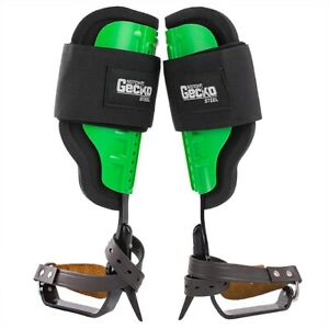 Gecko Steel Climbing Spikes With Pole palm Tree Short Gaffs best Price On Ebay