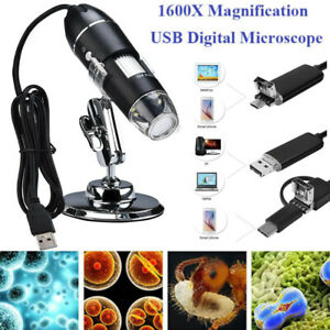 Portable 1600x Magnification Usb Digital Microscope Displayed On Computer Phone