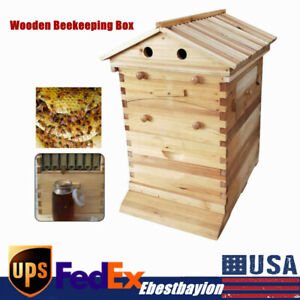 Beekeper Honey Bee Hive House Brood Box Set Wooden Box For Auto Honey Frames