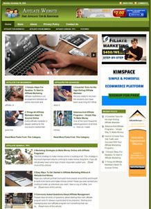 Affiliate Marketing Website Business For Sale Work From Home Online Business