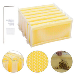 7 Auto harvest Honey Bee Hive Frames Bpa free Plastic Kit With 7 tube Beekeeping