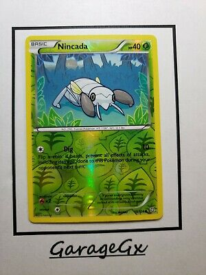 Pokemon NINCADA 10/124 Dragons Exalted Rev Holo Nm