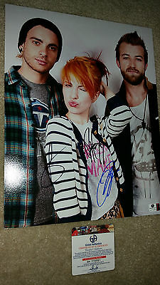 paramore band signed autograph 11x14 ga hayley williams