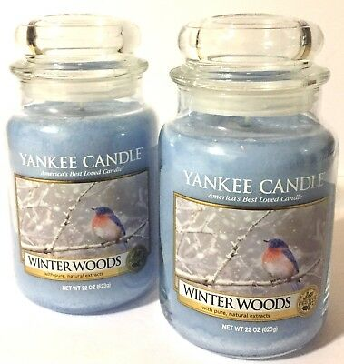 Yankee Candle Winter Woods Cedar Notes Light Blue Scented Wax Candle 2 Count Set